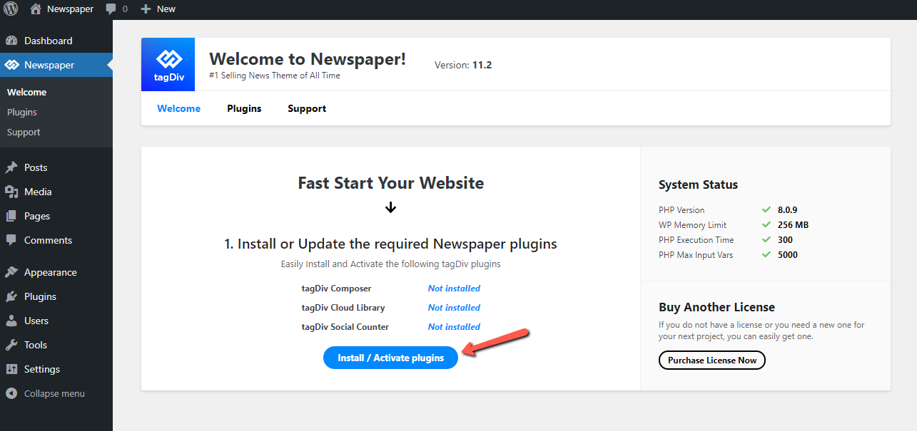 Install via WordPress: Newspaper Theme Welcome Panel