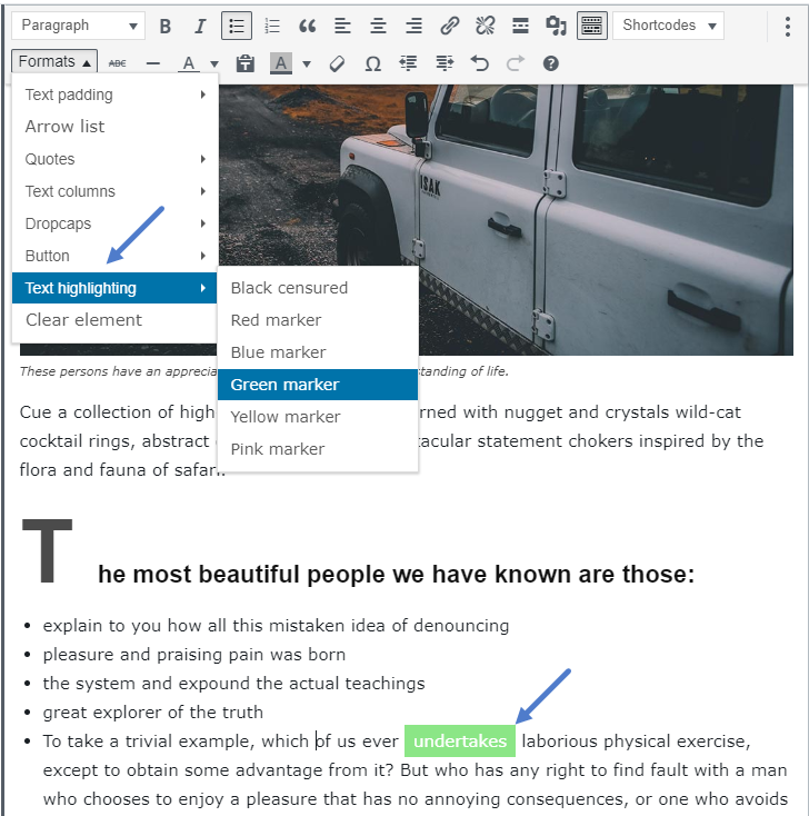 Text Highlight - post formats