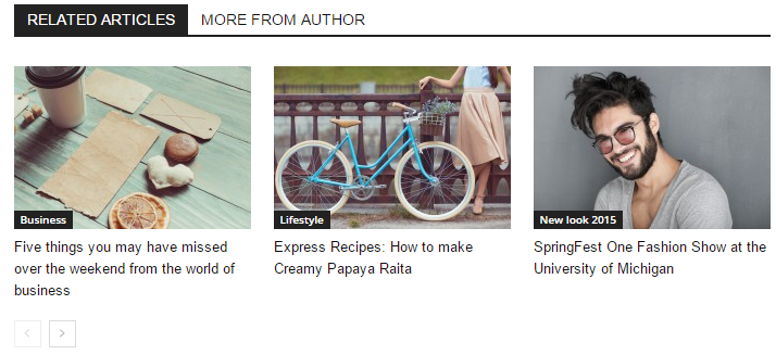 Newspaper Theme - Related Articles exemple