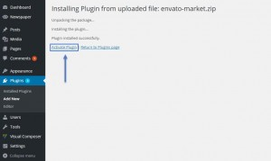 activate_plugin_1